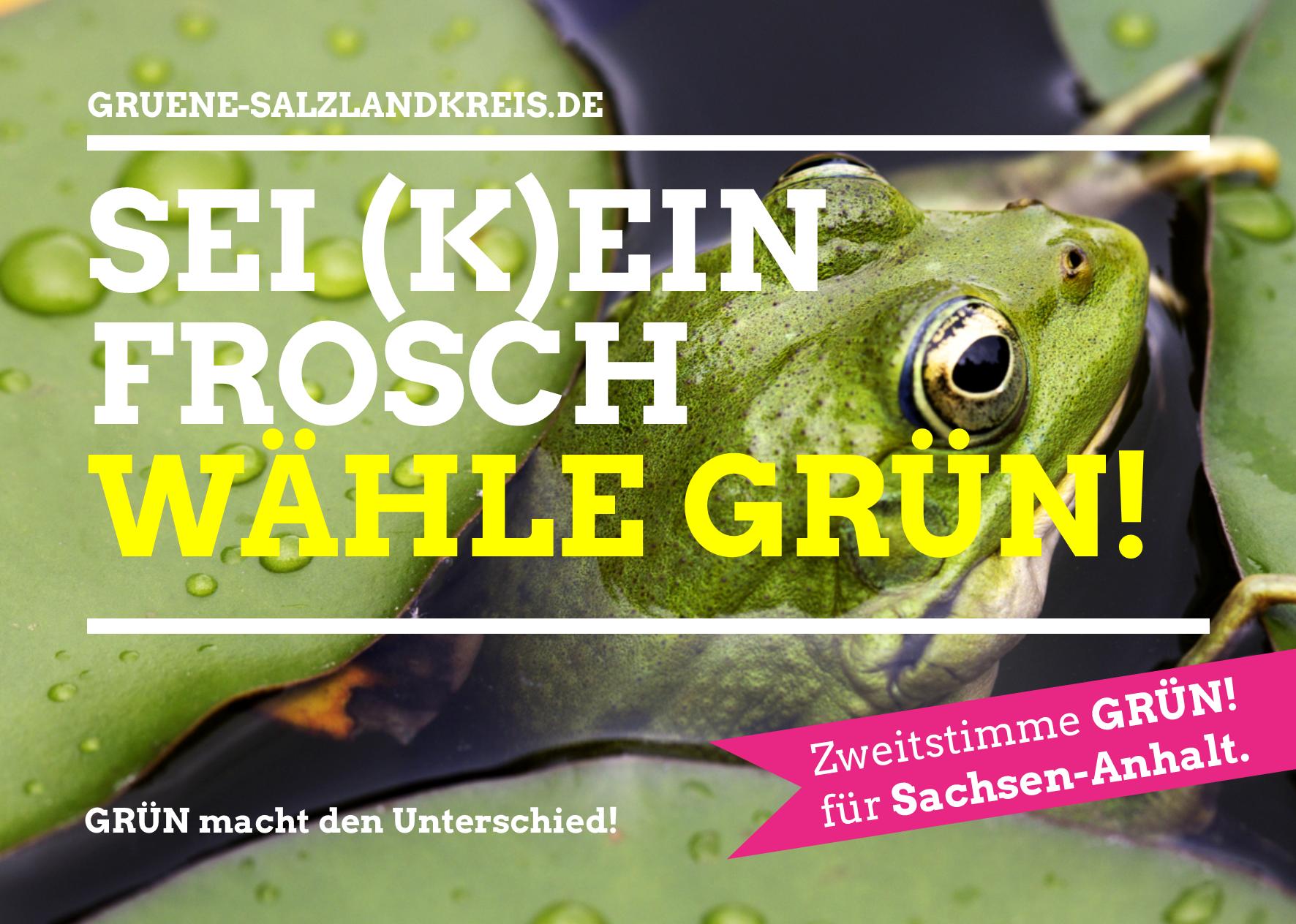 Flyer zur Landtagswahl 2016