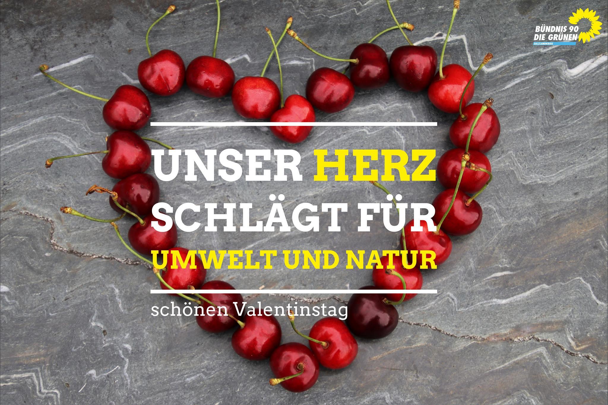 Unser Herz schlägt für die Umwelt und Natur.